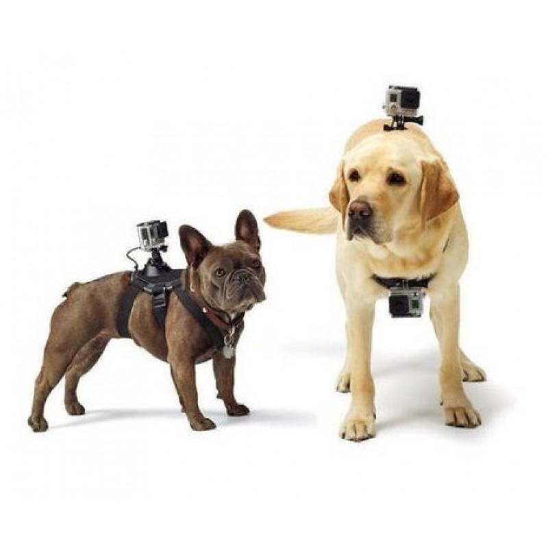 Крепление на собаку для GoPro