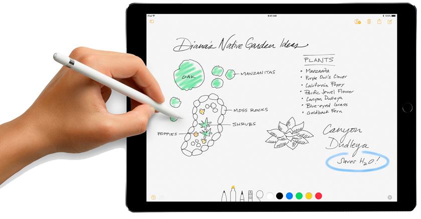 Рисунок на iPad с Apple Pencil в iOS 11